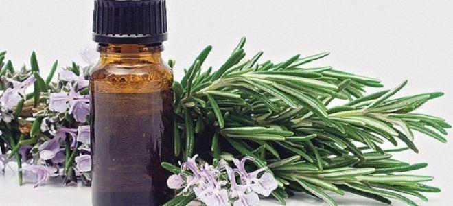 Как применять масло эвкалипта от насморка