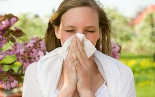Причины и лечение аллергического ринита