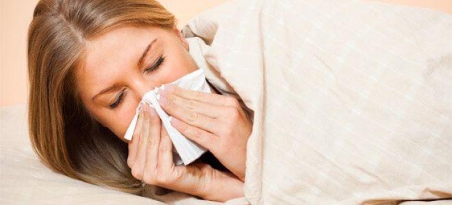Как организовать лечение затяжного насморка у взрослого